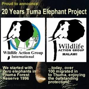 Kopie von 20 Jahre Thuma Forest 2 Logos