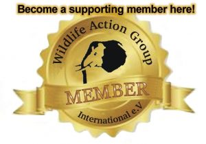 Become a Member here 1
